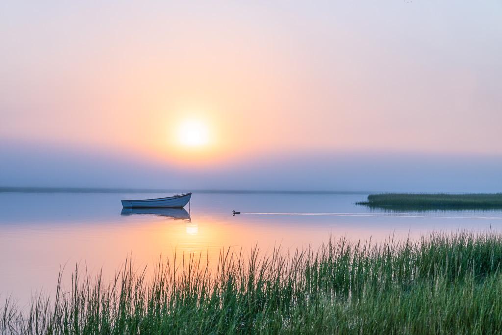 foggy-morning-sunrise.jpg
