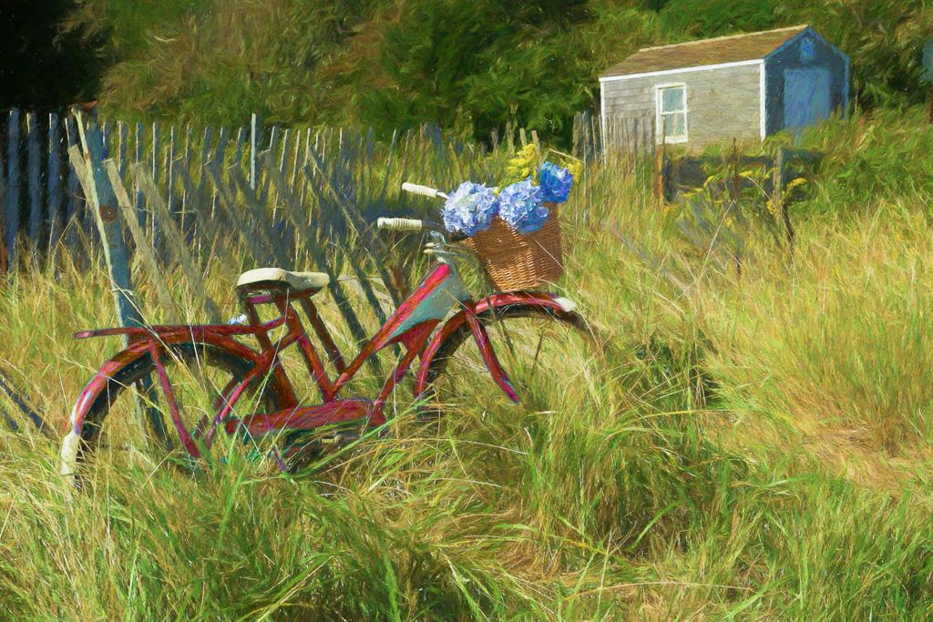 Red-Bike---Forest-Beach---Chatham.jpg