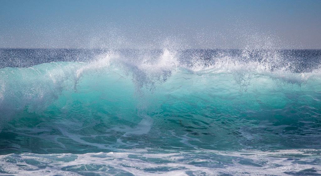 summer-wave-signed.jpg